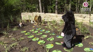 Patrick Nielsen og muldvarp - Helt i Skoven