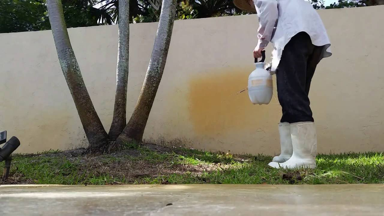 Removing well water stains from wall with pump sprayer - YouTube