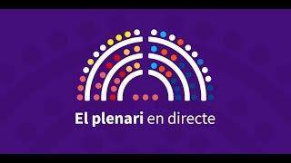 Sessions extraordinària i ordinària del Plenari del Consell Municipal 03/05/2019