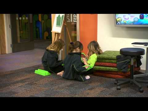 School Libraries: Excellence in Practice at Amesbury School