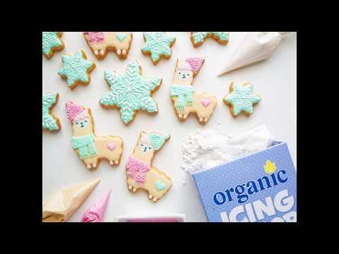 Organic Times Icing Sugar