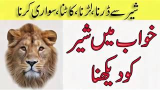 Khwab mein sher dekhna | Khwabon ki Tabeer in Urdu hindi
