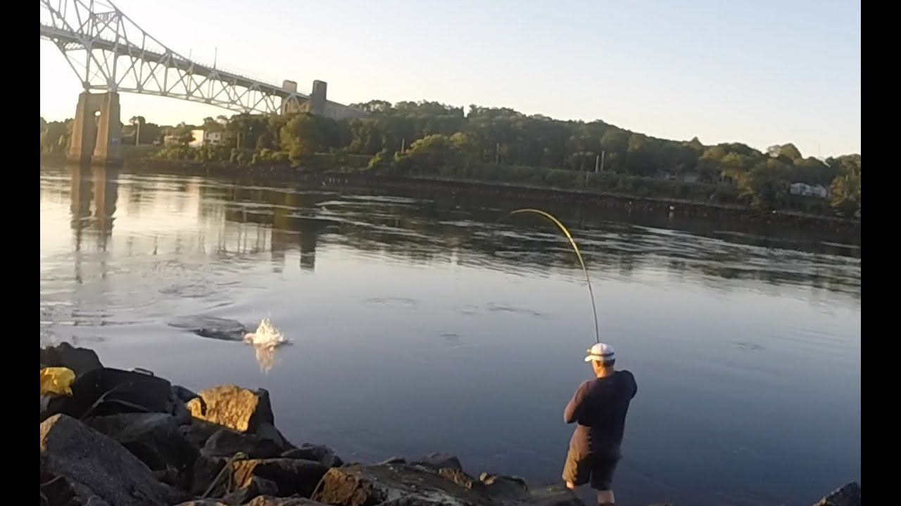 Cape cod canal striped bass 42 fish on top water youtube for Cape cod fishing