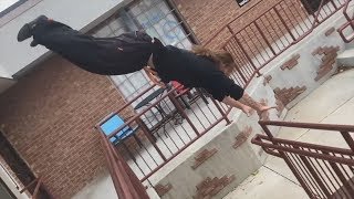Parkour and Freerunning 2018 - Amazing Stunts