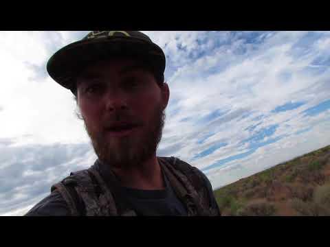 Utah Coyote Hunt 2018