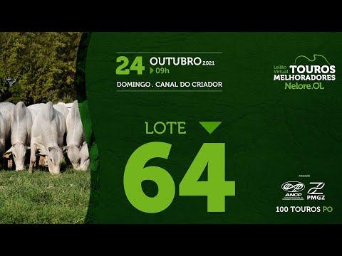 LOTE 64 - LEILÃO VIRTUAL DE TOUROS MELHORADORES  - NELORE OL - PO 2021