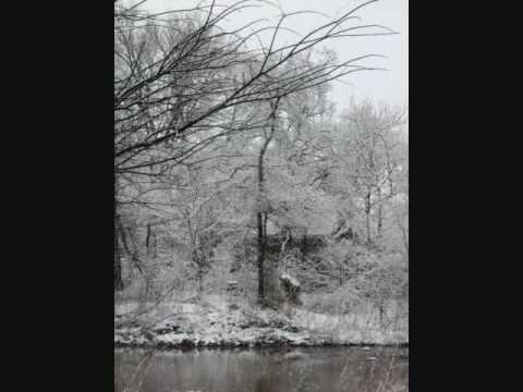 Snowy Scenes of Flower Mound, TX