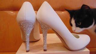Элитная женская обувь. Большой выбор модной женской обуви.(https://youtu.be/kr06yRajzlY Модная женская обувь включает в себя самые различные виды обуви на все случаи жизни. Босо..., 2015-09-13T18:06:50.000Z)