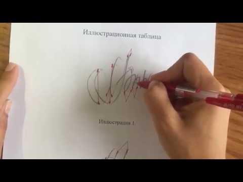 Как называется экспертиза подписи