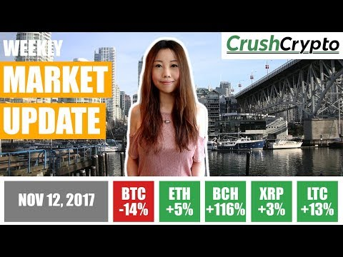 Weekly Update: Bitcoin Correction / Bitcoin Cash Rally / Parity's $150M Bug / BP & Shell / Comcast