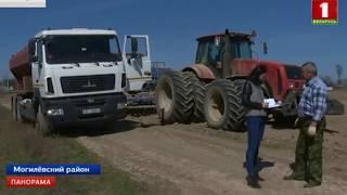 Урожайные перспективы Беларуси в 2018 году. Панорама