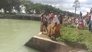 TRADITIONAL FISHING// FISHING CONTEST //CAST NET FISHING IN BANGLA CANAL.