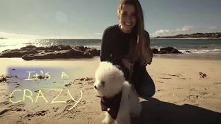 Crazy Beautiful Life (Lyrics Video) by Thomas Hien, Scott Chesak Wh...