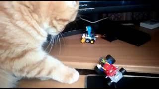 Мальчик играет в машинки...