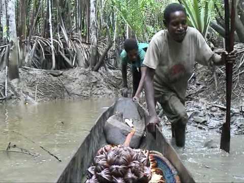 fishing - Asmat Papua