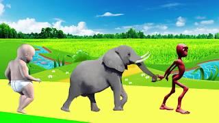 учить животных для малышей - животные для детей - видео развивающее #29
