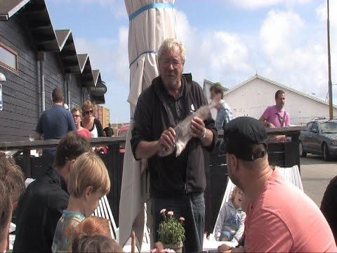 Fiskehandler  PETER WESTPHAL PÅ SKAGEN HAVN  Fortæller om Fisk til Feriebørn .  30 juli 2015