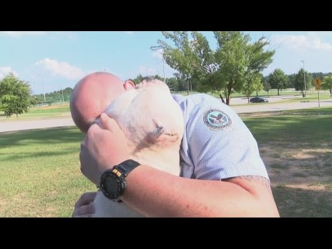 Dog Reunited with Owners After Missing for Almost Two Years
