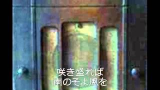 藤浦洸:作詞、外国曲。昭和十四年。松平の素晴らしいタンゴです。お聴...