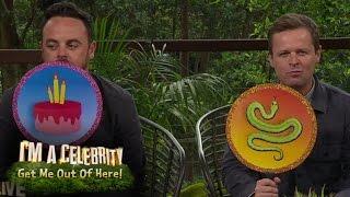 Ant vs Dec in Quiz - Snake or Cake? | I'm A Celebrity...Extra Camp