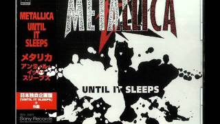 Metallica - 2x4 Live at Donnington 1995 (From the