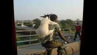 Nanny Goat (1968)~Freddie McGregor