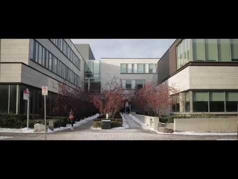 The Schulich Master of Finance Programme