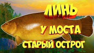 русская рыбалка 4 Линь озеро Старый Острог рр4 фарм Алексей Майоров