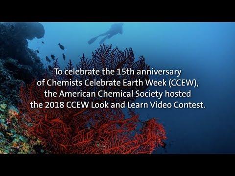 The ABCs Of Ocean Acidification