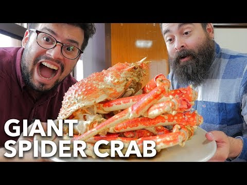 Eating a HUGE 2-Meter SPIDER CRAB in JAPAN! | Heda, Shizuoka Prefecture