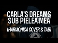 Carla S Dreams Sub Pielea Mea Harmonica Cover Tab mp3