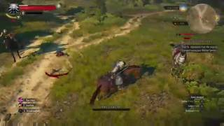 The Witcher 3: Wild Hunt [Story and Sword] - Part 15 | 4 Quests Completed, 2 Deaths