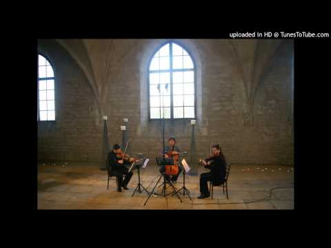 Johann Sebastian Bach - Goldberg Variations part 3
