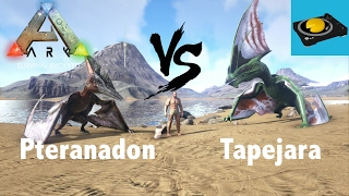 Ark Insight -- Pteranodon V.S Tapejara