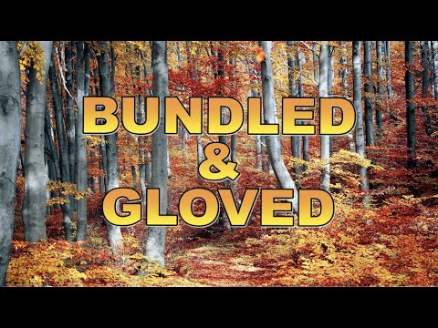 Bundled and Gloved | Young Jeffrey's Song of the Week