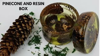 Pinecone and epoxy Resin box