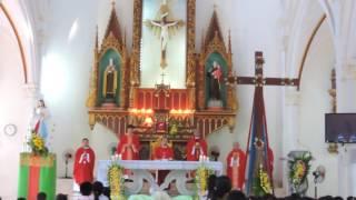 Lời dẫn nhập của cha An-tôn Trần Văn Công tại Thánh Lễ Suy Tôn Thánh Giá Vĩnh Hòa 26/7/2016