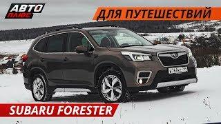 Что по динамике, комфорту и безопасности? Subaru Forester 2019 | Своими глазами