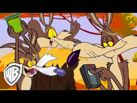Wabbit en Français  Les grands moments de Vil Coyote
