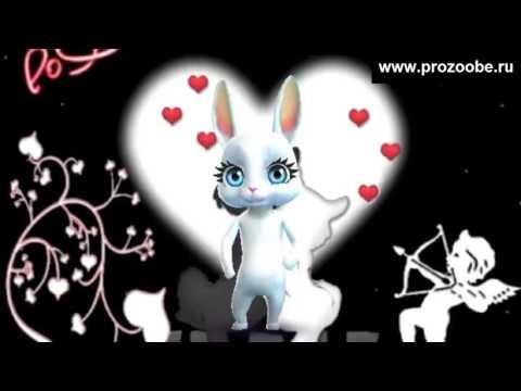 С Днем Святого Валентина ♡♡♡ Побольше страстных поцелуев ♡♡♡ Поздравление от Зайки Домашней Хозяйки - Как поздравить с Днем Рождения