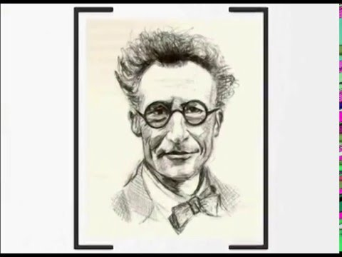 Erwin Schrödinger - A brief history of the father of quantum mechanics