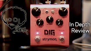 Strymon DIG - In Depth Review