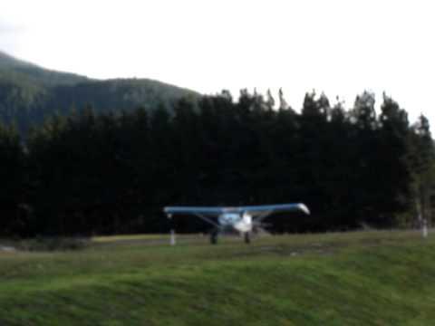 Piper Pacer Bush plane landing through trees