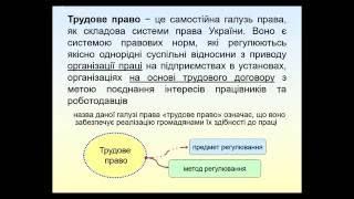 Тема 1 трудове право Костюченко О.Є.