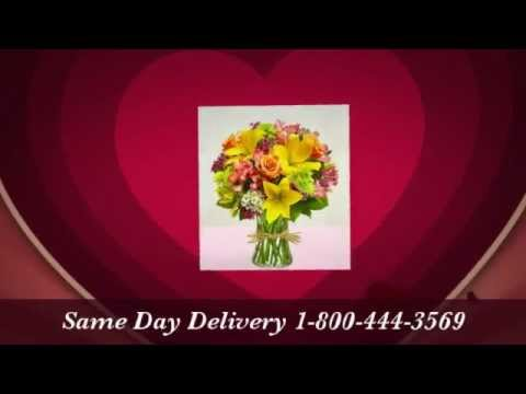 Flower Delivery Broomall Pa 1-800-444-3569 Send Flowers Broomall Pa