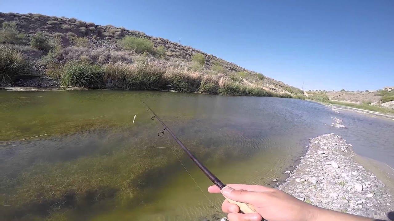 Az bass fishing youtube for Bass fishing az