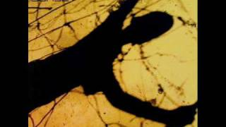 Nitin Sawhney ft. Eska - Sunset (KV5 Remix)