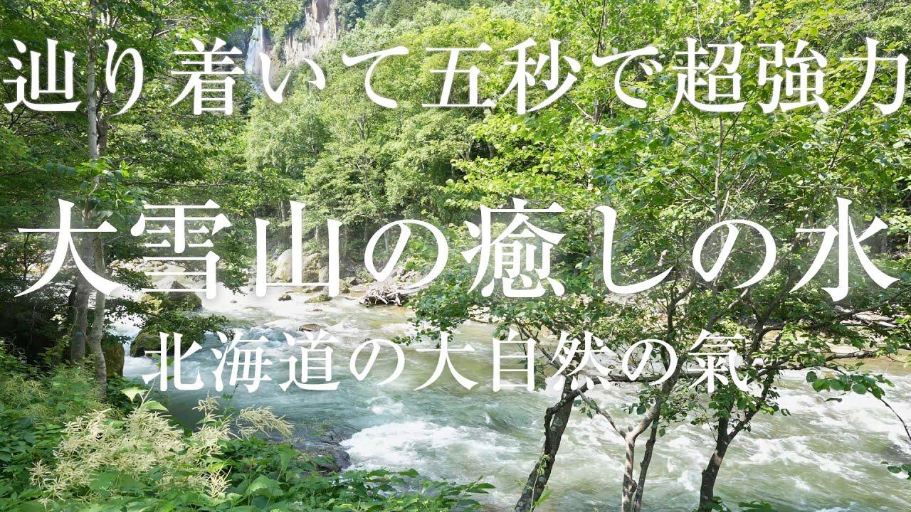 【大雪山の癒しの川の音】聴き流すだけで北海道の大自然&神威カムイの氣&火山のエネルギーで心身の疲労回復と&リッラクス&超グラウンディング できるパワースポット自然音【瞑想 熟睡眠 集中 作業 勉強】