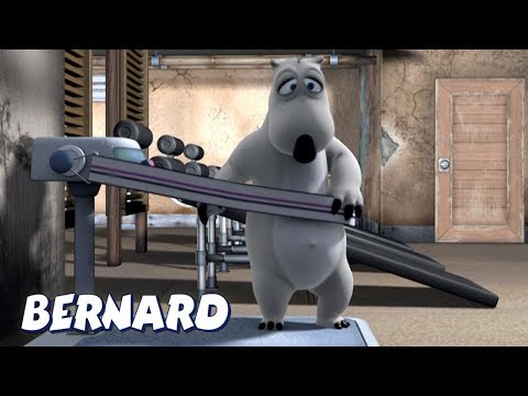 Bernard Bear | Working out AND MORE | Cartoons for Children