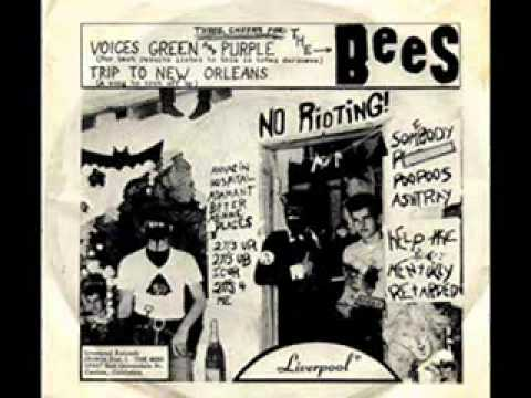 The Bees - Voices Green And Purple 1966  (psych, Fuzz, Garage)